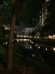 night scene on the singapore river